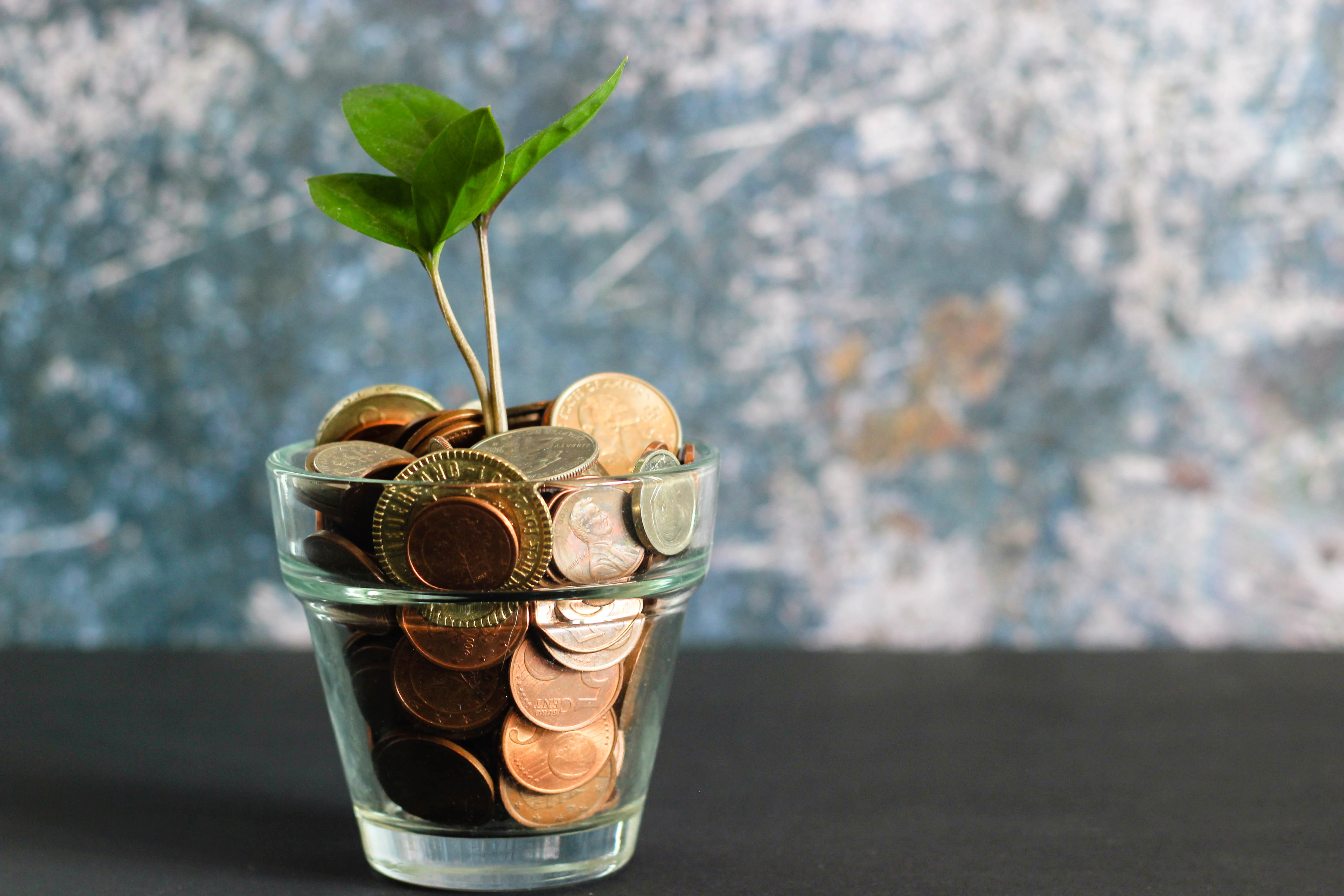 WHAT ARE SINKING FUNDS AND HOW TO SAVE FOR THEM